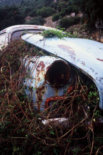 Το μουσούδι ενός Opel Rekord του '52, station wagon, που έγινε φυτώριο κάπου έξω από το Σούλι.